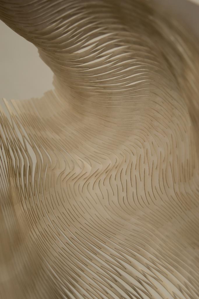 Laser cut Pattern, Leandra Eibl